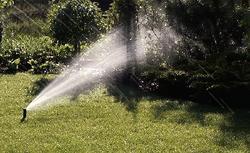 Nawadnianie ogrodu przydomowego: podlewanie czy system nawadniający?