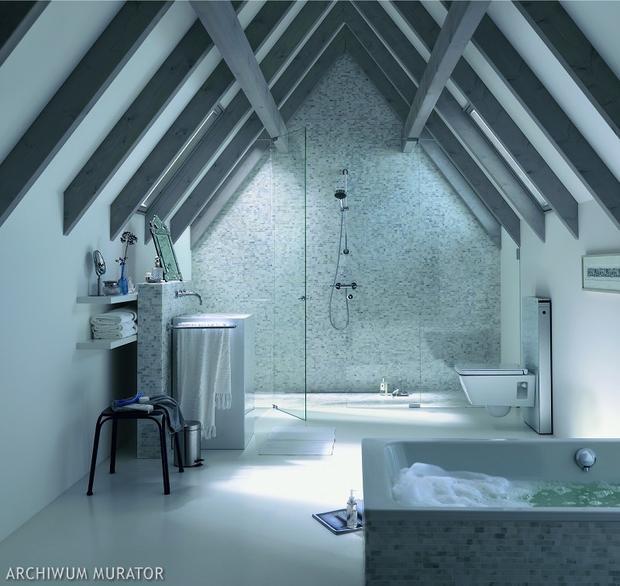 Zdj cia azienek na poddaszu adna aran acja azienki pod for Ventilation de salle de bain sous toiture